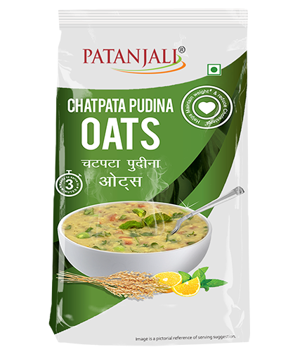 1543834616chatpatapudinaoats400-500.png