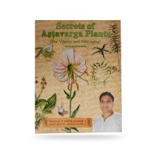 ASTHAVARGARAHASYAHINDI.png