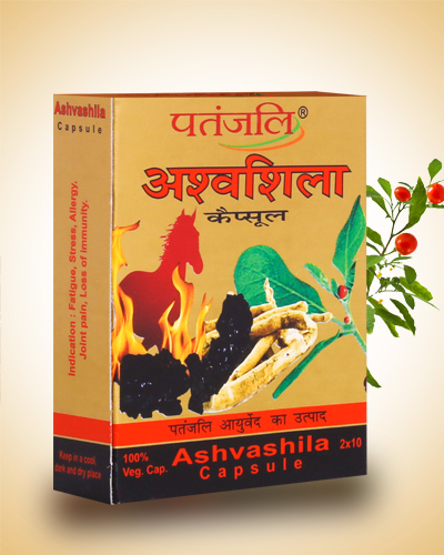 AshvashilaCapsule.jpg